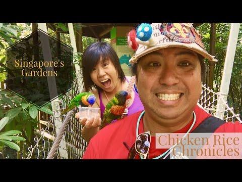Singapore Part 2 - Jurong Bird Park, Botanical Gardens, Gardens by the Bay and more | 4K Travel Vlog