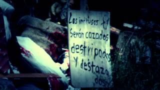 LA ISLA DE LAS MUÑECAS Promo adelanto de Voces Anónimas IV con Guillermo Lockhart