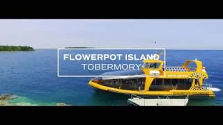 Flowerpot Island - Tobermory
