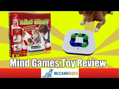 """Dog It"" Mind Games Dog Toy Review"