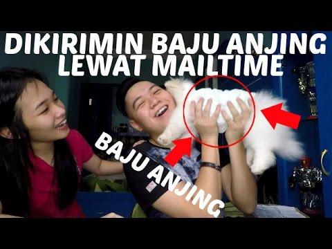 DIKASIH BAJU ANJING LEWAT MAILTIME!! | Gmail Time #8