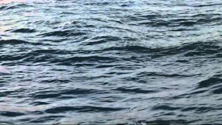 ~ Il mare calmo della sera ~Andrea Bocelli
