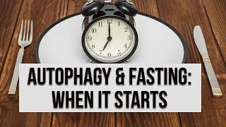 Autophagy & Fasting: when it all starts