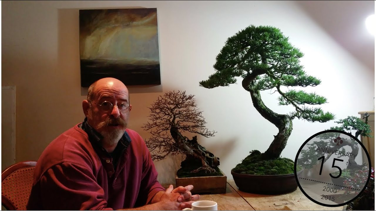 Deadwood On Bonsai Jin Shari And Uro Will Baddeley Youtube