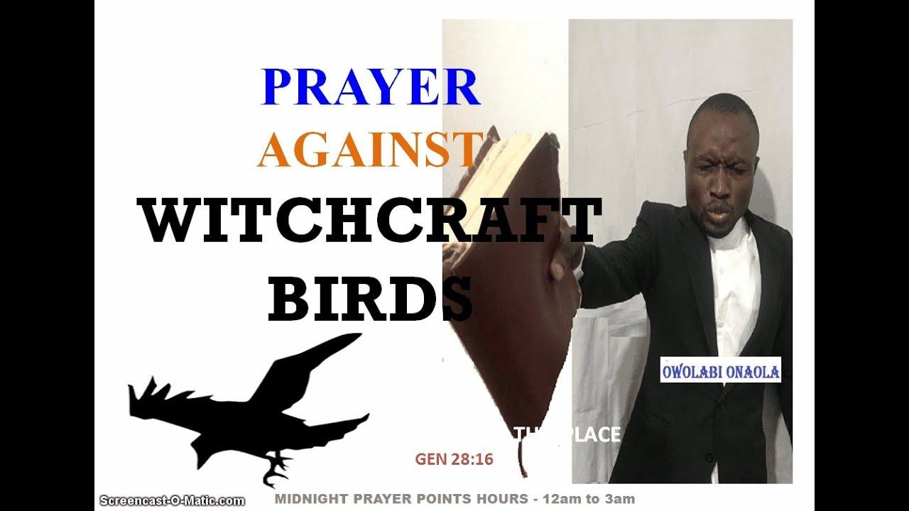 Download Prayer Against Witchcraft Birds - Owolabi Onaola