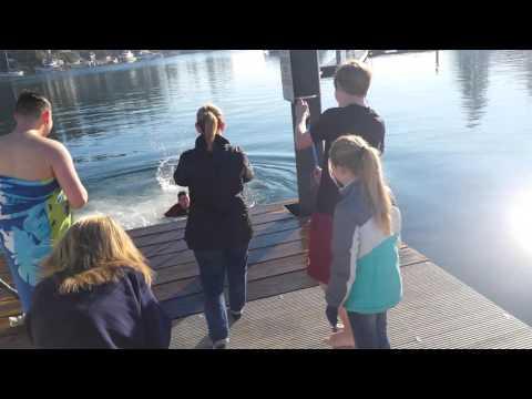 Polar Bear Plunge at Maritime Pier