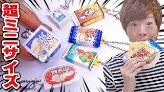 【ガシャポン】超ミニサイズの不思議な仕掛け付きアイスが面白い!【全種類】 thumbnail