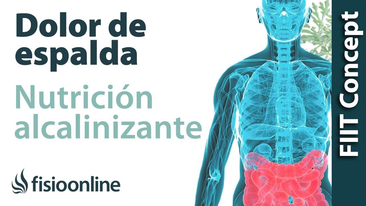 Fisioterapia online dieta alcalina