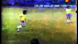 PERU CAMPEON 1975 A COLORES