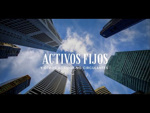 Activos Fijos y otros Activos No Circulantes