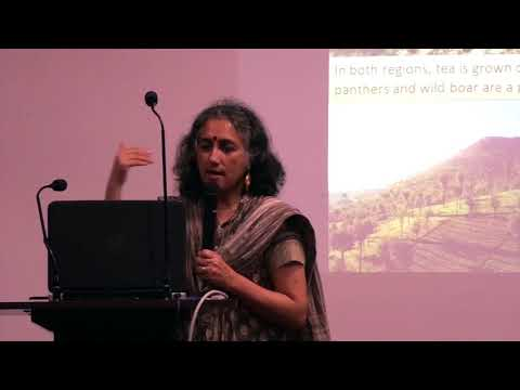 MSE Silver Jubilee Lecture Dr. Shyama Ramani