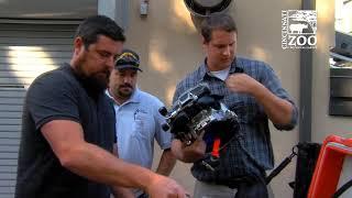 Duke Energy Donates Dive Gear to the Cincinnati Zoo