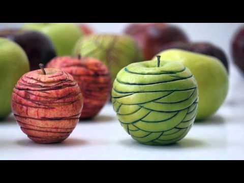 BIO vs OGM / Organic vs GMO