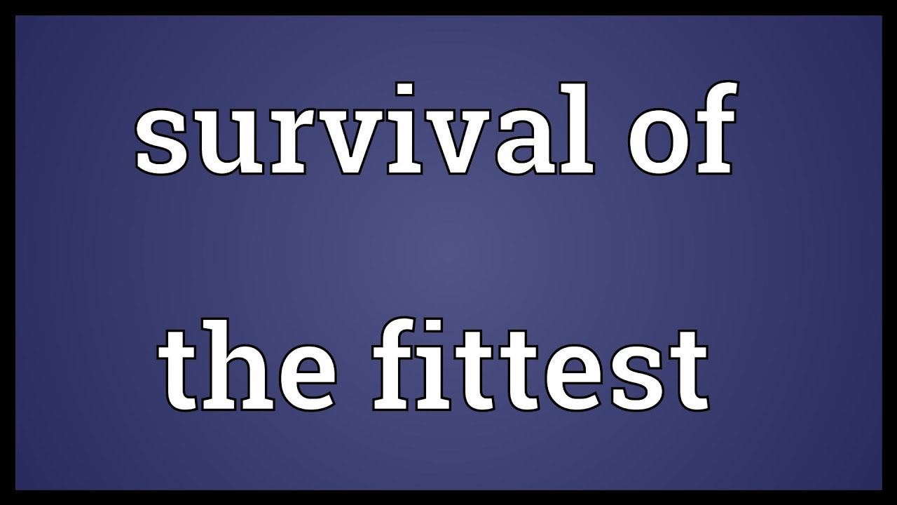 Survival Of The Fittest Natural Selection Definition
