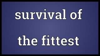 Survival of the fittest Meaning