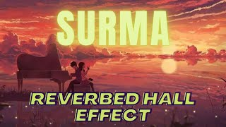 Surma|| Aamir Khan|| Reverb and Hall Effect || Slowed Down Song