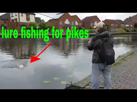 Lure Pike Fishing On The Canal