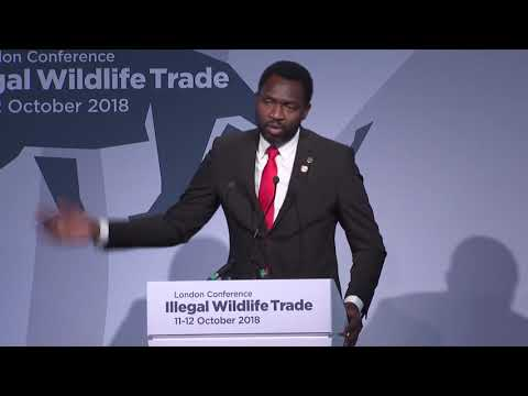 Illegal Wildlife Trade conference London 2018 Day 1: How tourism can combat IWT