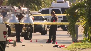 Suspected car thief killed by police in Miami Gardens