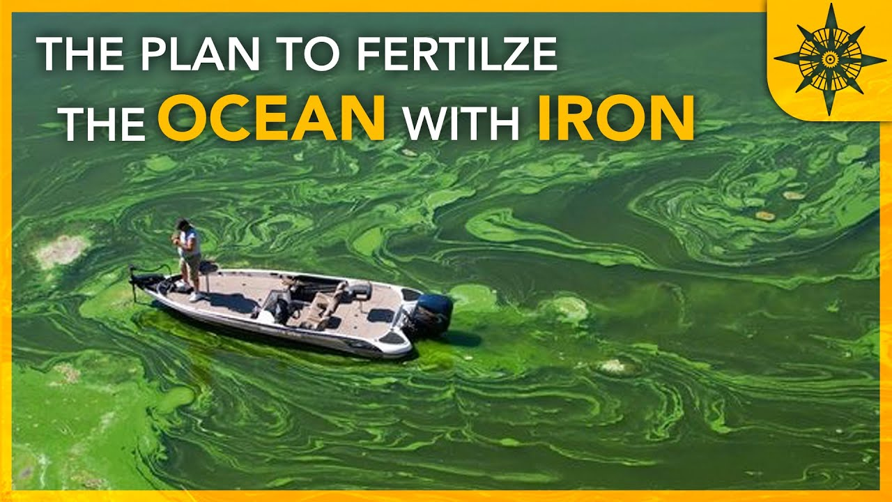 The Plan to Fertilize the Ocean With IRON