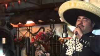 Miguel Vicente Fernandez Salinas  en vivo  (TRIBUTO A VICENTE FERNANDEZ)