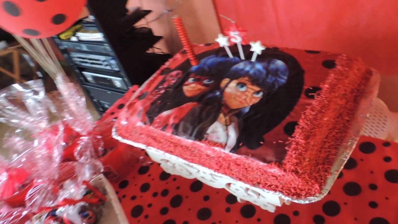 Festa De 15 Anos Simples: Alice Tema LadyBug 15/09/2016