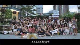 大切な仲間、友達に送る友情ソング!!!! 〜チェスマイカ ともに〜 リリックPV thumbnail
