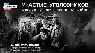 Участие уголовников в Великой отечественной войне.