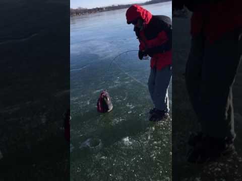 Big Laker on Thin Ice Lake Champlain 1/16/17