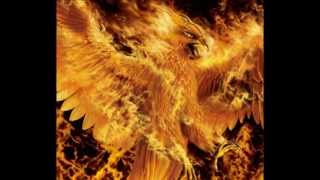 Dragons - Jordan Page