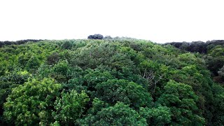 *ABANDONED* CHURCH DRONE INTERFERENCE | SKIDBROOKE CHURCH, Lincolnshire