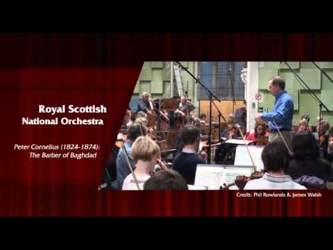 Great Comedy Overtures (Royal Scottish National Orchestra, Friedel) [8.573418] - Raising a Smile