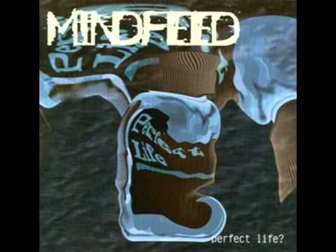Mindfeed - Unreal World