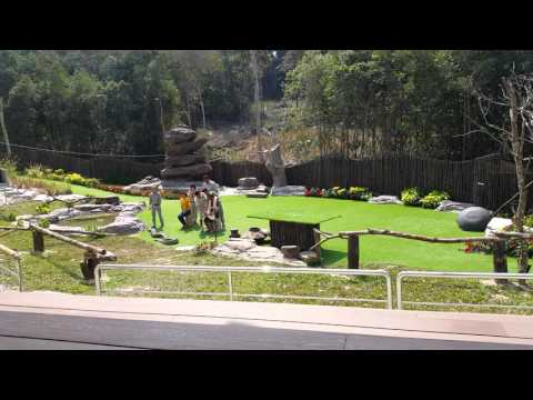 Phu Quoc 2-2016 Vinpearl Safari Xiec Thu 4