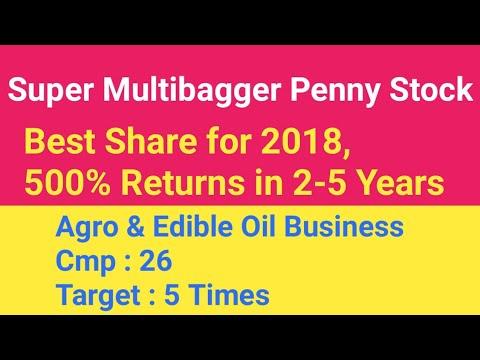 #2 Super Multibagger Penny Stock 2018 | Multibagger Share 2018 | Agro &  Edible Oil Business