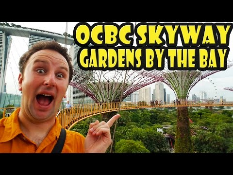 Gardens by the Bay - OCBC Skyway - Singapore