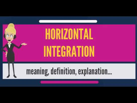 What Does Horizontal Integration Mean