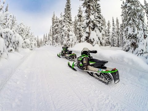 Black Bear Cutoff Trail - West Yellowstone Snowmobiling