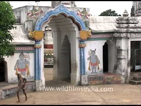 Lingaraja Temple - Largest temple in Bhubaneswar, Odisha