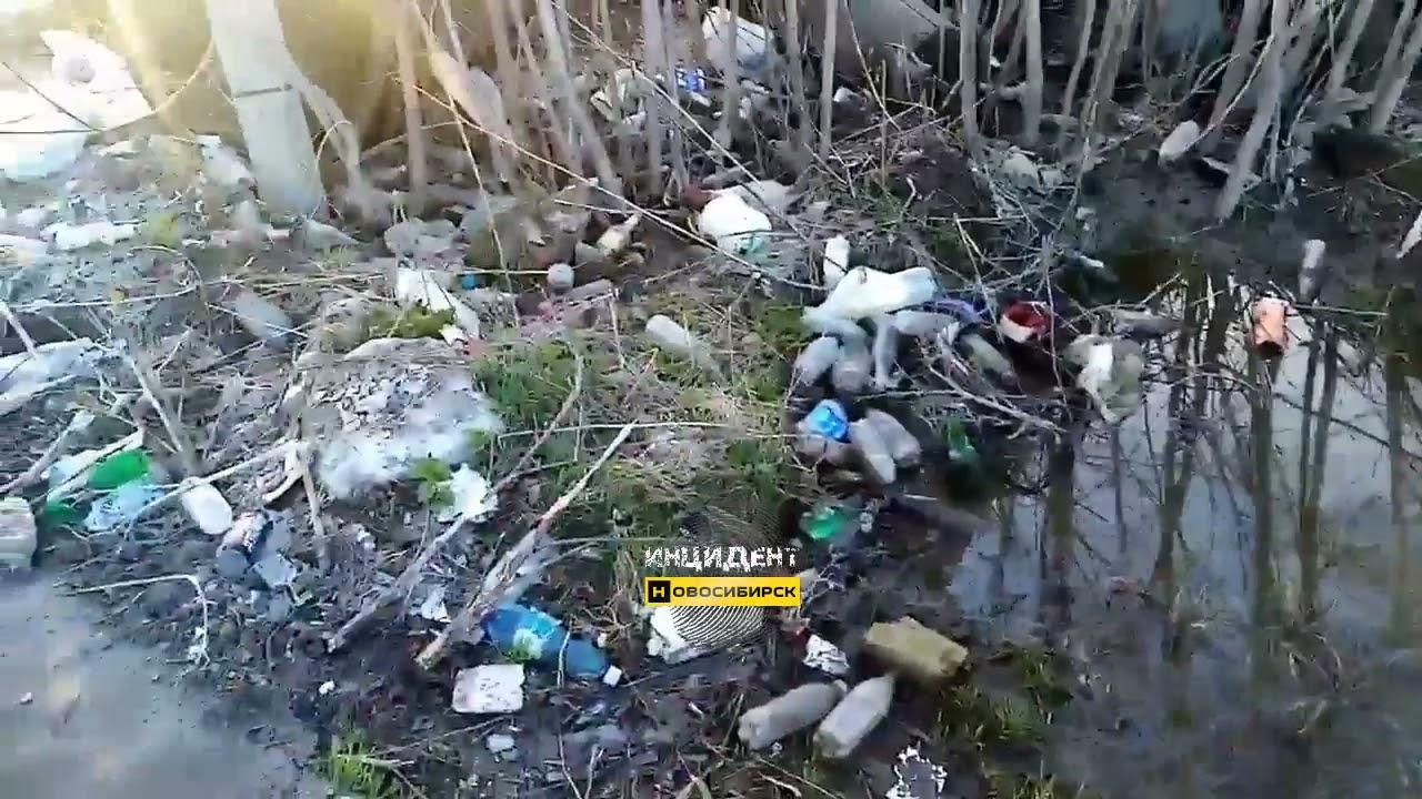 Мусор в Дивногорском