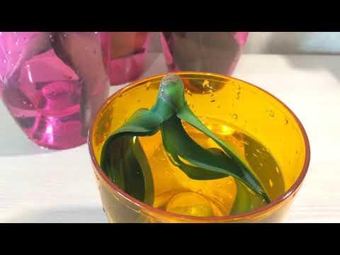 Реанимация орхидеи без корней. Самый простой и эффективный способ!