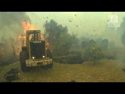 Firefighters battle huge bushfire in Western Australia