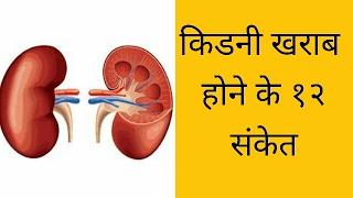 किडनी खराब होने के १२ संकेत | kidney kharab hone ke 12 sanket | janiye kaise |