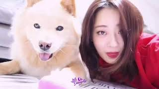 GyeongRee (경리) 9Muses (나인뮤지스) All Instagram Videos Part 2