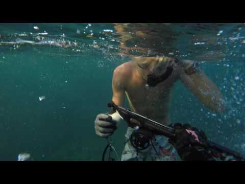OAHU, HAWAII - Spearfishing Ko Olina - May 2016