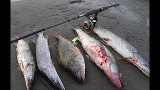 Рыбалка в отвес на щуку  часть 2