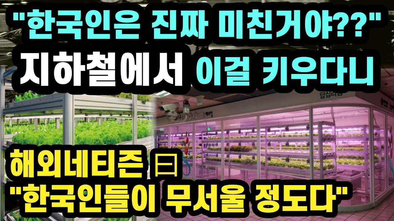 """""""한국인은 진짜 미친거야??"""" 지하철에서 이걸 키우다니..""""한국인들이 이제 무서울 정도다"""""""