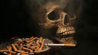 Из чего делают Сигареты!