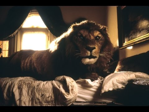 "Jumanji- Tom Woodruff Jr. As ""The Lion""- Animatronic Lion, Behind the Scenes"