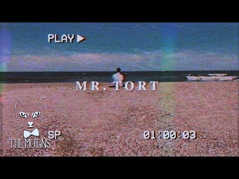 The Motans - Mr. Tort | Videoclip Oficial